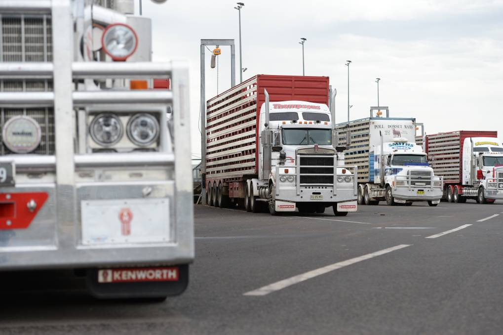KEEP ON TRUCKING: The road transport sector is gearing up for major growth despite an aging workforce and a shortage of drivers.